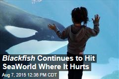 Blackfish Continues to Hit SeaWorld Where It Hurts