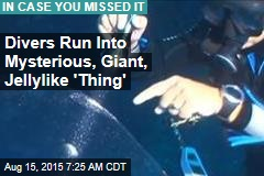 Divers Run Into Mysterious, Giant, Jellylike 'Thing'