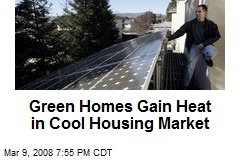 Green Homes Gain Heat in Cool Housing Market