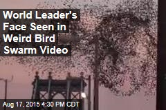 Viral Video Shows 'Putin's Face' in Flock of Birds