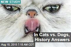 In Cats vs. Dogs, History Answers