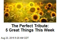 The Perfect Tribute: 5 Great Things This Week