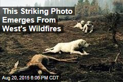 This Striking Photo Emerges From West's Wildfires
