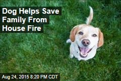 Dog Helps Save Family From House Fire