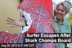 Surfer Escapes After Shark Chomps Board
