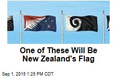 One of These Will Be New Zealand's Flag