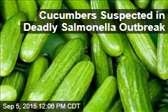 Cucumbers Suspected in Deadly Salmonella Outbreak