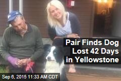 Pair Finds Dog Lost 42 Days in Yellowstone