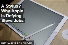 A Stylus? Why Apple Is Defying Steve Jobs