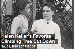 Helen Keller's Favorite Climbing Tree Cut Down