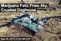 Marijuana Falls From Sky, Crushes Doghouse