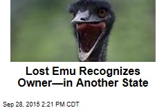 Lost Emu Recognizes Owner—in Another State