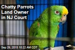 Chatty Parrots Land Owner in NJ Court