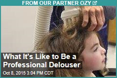 What It's Like to Be a Professional Delouser