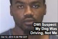 DWI Suspect: My Dog Was Driving, Not Me