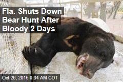 Fla. Shuts Down Bear Hunt After Bloody 2 Days