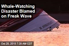 Whale-Watching Disaster Blamed on Freak Wave