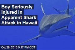 Boy Seriously Injured in Apparent Shark Attack in Hawaii