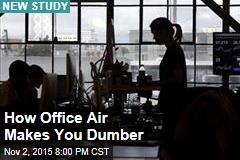 Typical Office Air Makes You Dumber