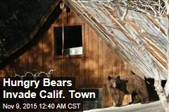 Hungry Bears Invade Calif. Town