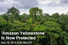 'Amazon Yellowstone' Is Now Protected