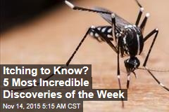 Itching to Know? 5 Most Incredible Discoveries of the Week
