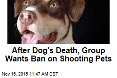 After Dog's Death, Group Wants Ban on Shooting Pets