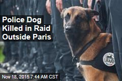 Police Dog Killed in Raid Outside Paris