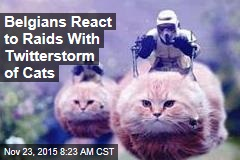 Belgians React to Raids With Twitterstorm of Cats