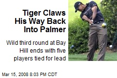 Tiger Claws His Way Back Into Palmer