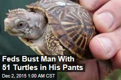 Feds Bust Canadian With 51 Turtles in His Pants