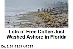 Lots of Free Coffee Just Washed Ashore in Florida