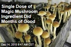 Single Dose of Magic Mushroom Ingredient Did Months of Good