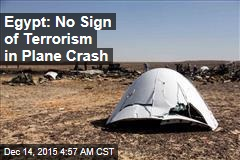 Egypt: No Sign of Terrorism in Plane Crash