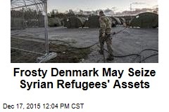 Frosty Denmark May Seize Syrian Refugees' Assets