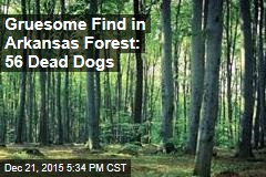 Lumber Workers Make Gruesome Discovery in Arkansas Forest