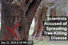 Scientists Accused of Spreading Tree-Killing Disease