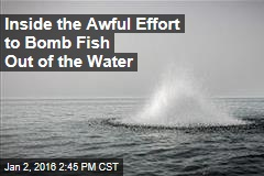 Inside the Awful Effort to Bomb Fish Out of the Water