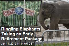 Ringling Elephants Taking an Early Retirement Package