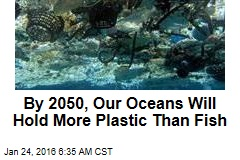 By 2050, Our Oceans Will Hold More Plastic Than Fish
