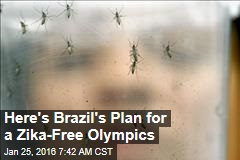 Here's Brazil's Plan for a Zika-Free Olympics