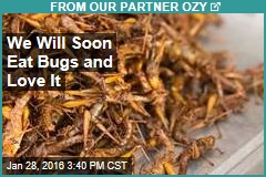 We Will Soon Eat Bugs and Love It