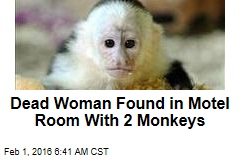 Dead Woman Found in Motel Room With 2 Monkeys