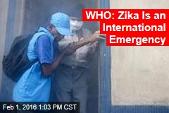 WHO: Zika Is an International Emergency