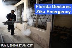 Florida Declares Zika Emergency