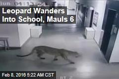 Leopard Wanders Into School, Mauls 6