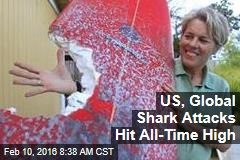 US, Global Shark Attacks Hit All-Time High