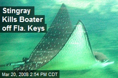 Stingray Kills Boater off Fla. Keys