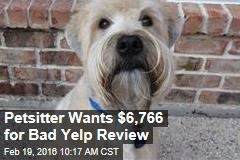 Petsitter Wants $6,766 for Bad Yelp Review