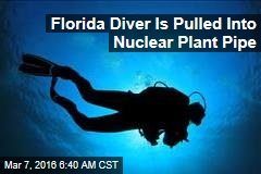 Florida Diver Is Pulled Into Nuclear Plant Pipe